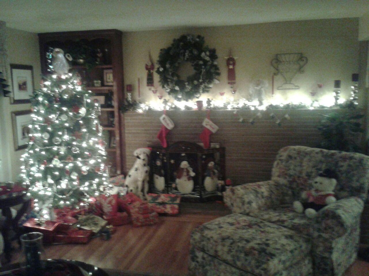 Real or Fake Christmas tree?-2012-12-05-17.38.09.jpg
