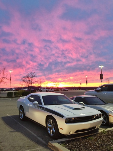 I want to see pics of white Challengers!-imageuploadedbyautoguide1360038140.672166.jpg