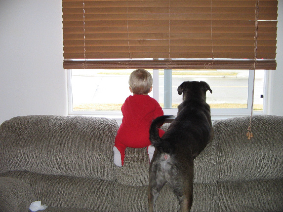 Show Us Your Pets!-img_1200-3-.jpg