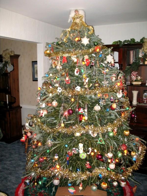 Real or Fake Christmas tree?-tree3.jpg