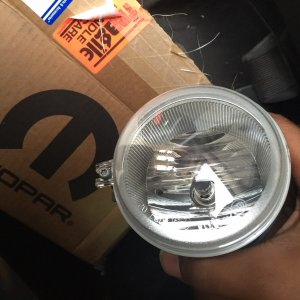 fog light came in!