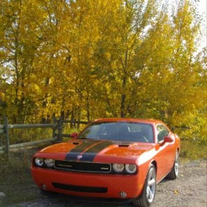 Fall pics, orange Challenger!!